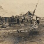 History of Bermagui's Timber Industry