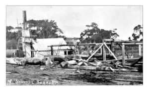 Sawmill Bermagui pre-1934